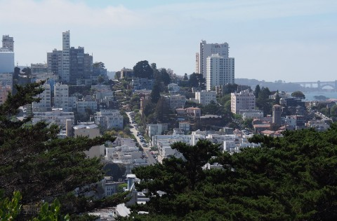 Lombard Street in the distance...yes we walked there