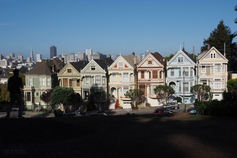 37-painted-ladies