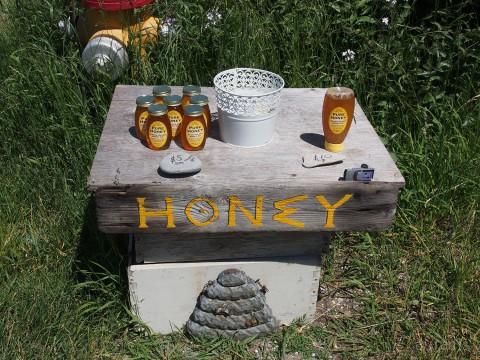 13-honey