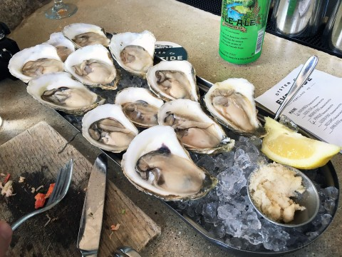 3-oysters